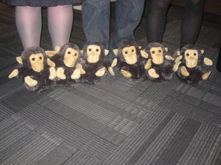 gorilla-slippers