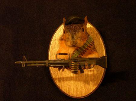 rambofoxsquirrel2